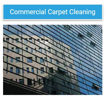 Carpet Cleaning Brisbane Northside