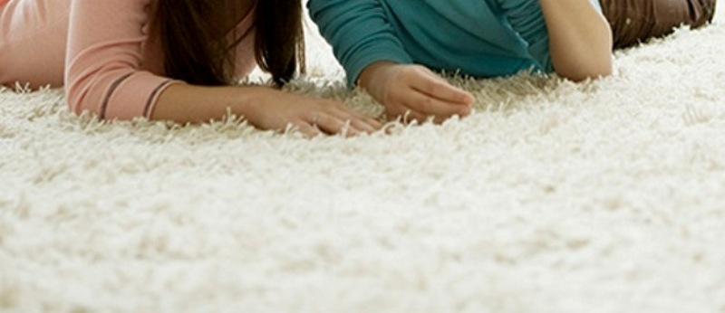 Carpet Cleaner In Sydney